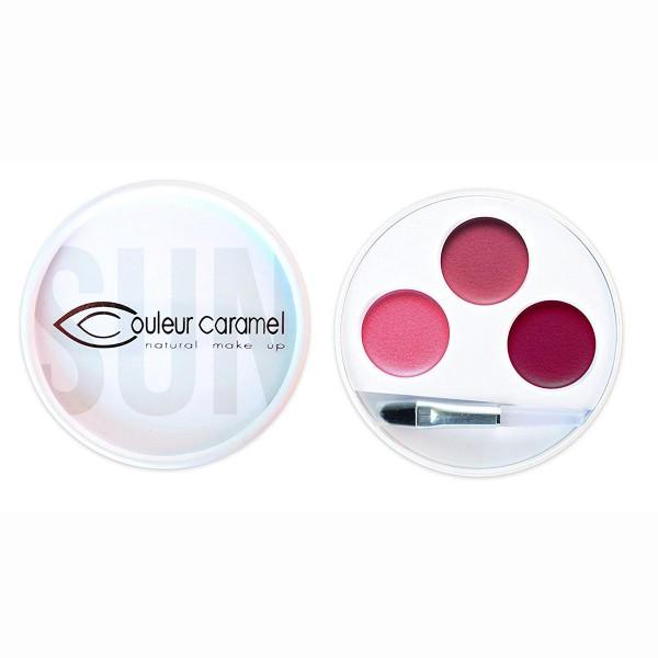 Couleur caramel palette 3 barra de labios 31
